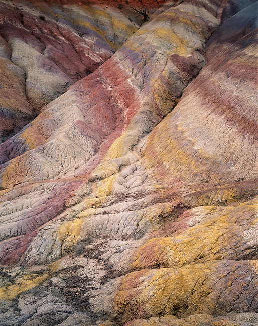 Chinle shale mounds banded with color; Paria Canyon-Vermillion Cliffs Wilderness; Arizona