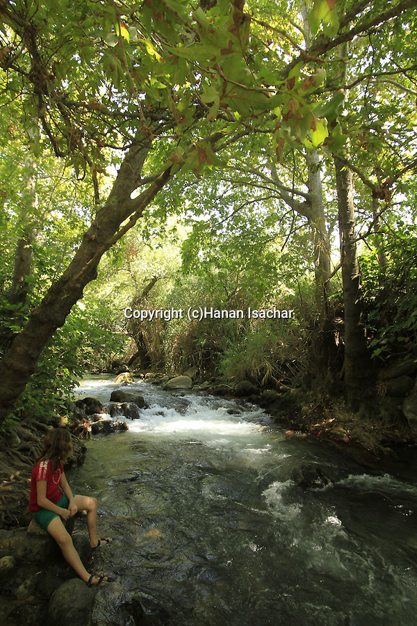 Israel, Upper Galilee, the Lower Banias stream