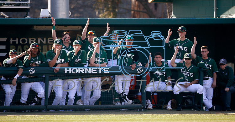 The Sacramento State Hornets play the Santa Barbara Gauchos in Sacramento, Ca., on Saturday, Feb. 15, 2020. <br /> Photo by Cathleen Allison/Cathleen Allison Photography