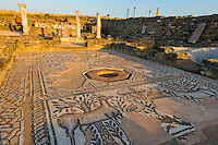 Mosaics at Stobi, 2000 year old town in Southern Macedonia