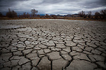 LOVELOCK, NV - JANUARY 29, 2014: A pond is dried-up on the Moura ranch and they expect to receive none of their expected water allotment as a drought emergency is declared in Nevada. CREDIT: Max Whittaker for The New York Times