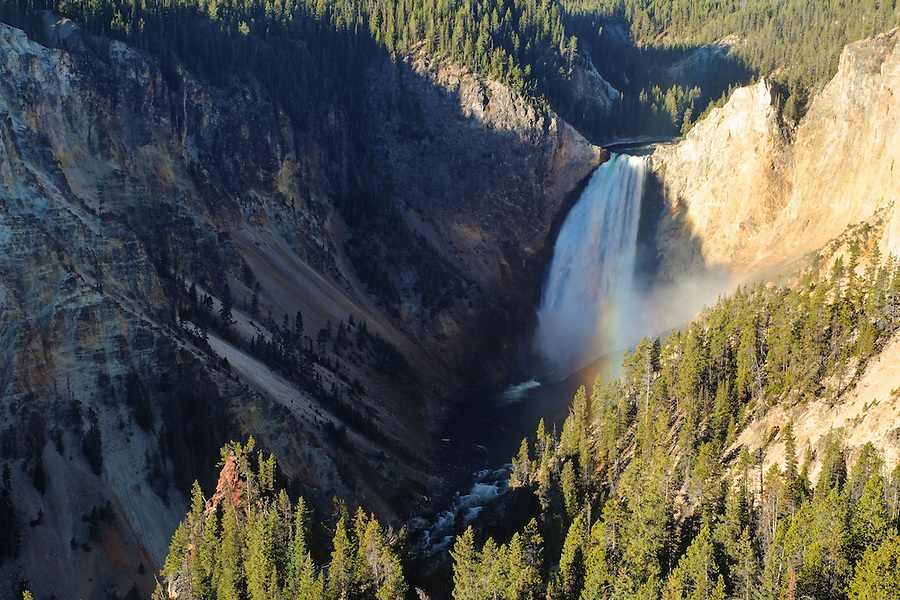 Lower Falls of the Yellowstone River viewed from Lookout Point, Grand Canyon of the Yellowstone, Yellowstone National Park, Wyoming, USA
