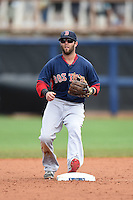 Boston Red Sox second baseman Dustin Pedroia (15) during a spring training game against the Tampa Bay Rays on March 25, 2014 at Charlotte Sports Park in Port Charlotte, Florida.  Boston defeated Tampa Bay 4-2.  (Mike Janes/Four Seam Images)