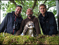 BNPS.co.uk (01202 558833)<br /> Pic: TomWren/BNPS<br /> <br /> (L to R) Paul Morton, founder of Birds of Poole Harbour, Jason Fathers from Wildlife Windows and Tim Mackrill from the Roy Dennis Wildlife Foundation.<br /> <br /> Conservationists have placed eight osprey chicks into a harbour setting in a bid to re-colonise the endangered bird of prey to southern England.<br /> <br /> The young birds have been taken from nests in northern Scotland, where there are now sustainable populations of them, and transported 500 miles south to Poole Harbour in Dorset.<br /> <br /> They will live in pens until to can fly and explore the harbour which has a rich diet of fish for them.<br /> <br /> It is expected they will remain on the south coast for five weeks before they begin their long migration to West Africa where they overwinter.<br /> <br /> Experts hope that when the young ospreys return from Africa to the UK next spring they won't think about flying north and will stop in Poole.