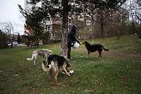 BULGARIA, Sofia, 2012/04/5..A local resident of Lyulin quarter in Sofia, Bulgaria, feeds stray dogs in the park of his building..BULGARIE, Sofia, 2012/04/5..Une habitante du quartier de Lyulin à Sofia, Bulgarie, nourrit des chiens errants dans le parc de son immeuble..© Pierre Marsaut