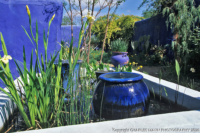 At his Antique Rose Emporium demonstration garden, Mike Shoup used the colors of the Moroccan garden Majorelle to recrate an exotic blue compound with a fountain in the same colors.