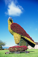 Eco Sculpture, Burnaby Lake Regional Nature Park, Burnaby, BC, British Columbia, Canada - Topiary Eagle Bird Sculpture, Public Art Display, Urban Artwork