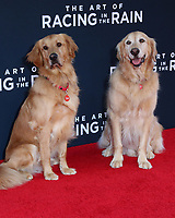 """LOS ANGELES - AUG 1:  Butler, Parker at the """"The Art of Racing in the Rain"""" World Premiere at the El Capitan Theater on August 1, 2019 in Los Angeles, CA"""