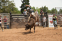 True Grit Bull Camp 2014 - 5.25.2014 - Day 2