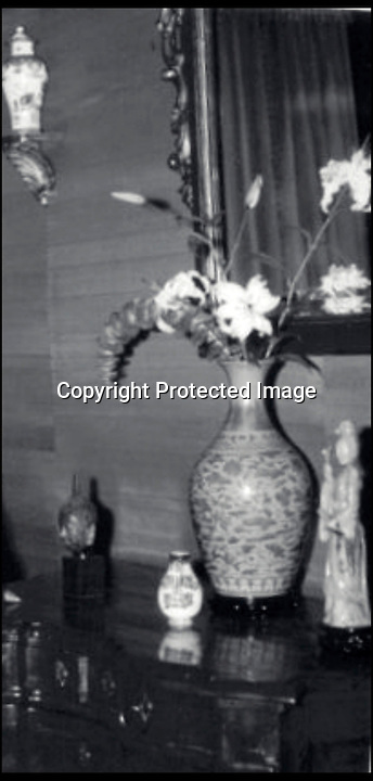 BNPS.co.uk (01202 558833)<br /> Pic: Christie's/BNPS<br /> <br /> ***Please use full byline***<br /> <br /> The vase in use. <br /> <br /> A vase that was used to keep flowers in by its unwitting owners has sold for &pound;3 million after it was revealed to be a rare 18th century Chinese relic.<br /> <br /> The 16-inch yellow and green ceramic was sat on top of a chest of drawers in its owners' house when eagle-eyed auctioneers spotted its significance.<br /> <br /> But even the experts at Christie's in London underestimated its true worth after it sold for 15 times the &pound;200,000 price they tipped it to fetch.<br /> <br /> Unbeknownst to its owners the vase was actually a remarkable 300-year-old artefact from the Imperial kilns of the Yongzheng emperor.