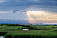 Grays Beach salt marsh wetlands