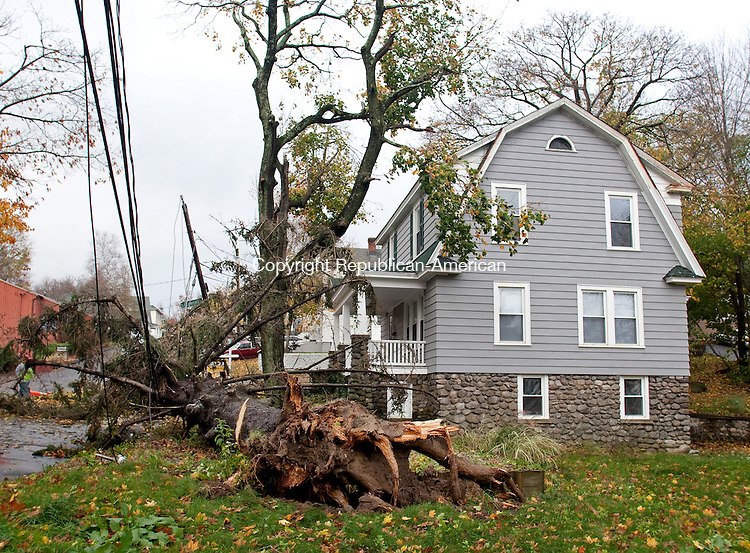 WATERBURY, CT-30 October 2012-103012BF06-- A White Pine tree that fell Monday night at 24 Vernon Street in Waterbury. The tree broke at it's roots according to David Delgado of Lewis Tree Service, Inc. and fell across power lines. The remnants of Hurricane Sandy are still being felt across Connecticut Tuesday as the cleanup begins.  Bob Falcetti Republican-American