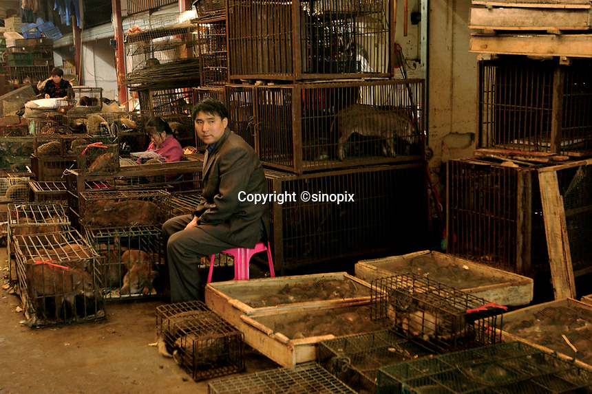 """Guangzhou animal market sells all kinds of animals in terrible conditions and slaughters many at the market in this file photo. China's wild animal markets, where live wild animals and reared animals are sold are the source of many viruses that mutate as they """"jump"""" from animals to humans. The coronavirus COVID-19 is thought to have originated in an animal market in China. <br /> By Sinopix Photo Agency"""