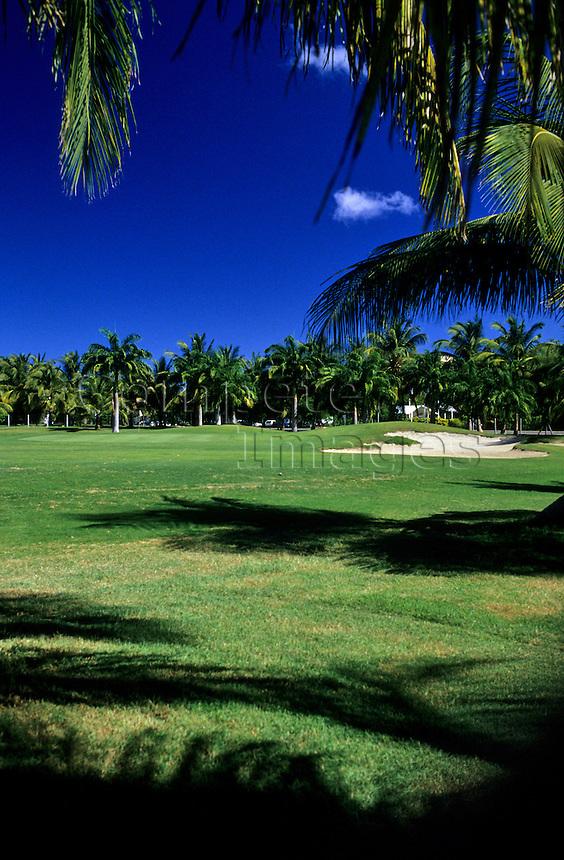 Tropical golf fairway