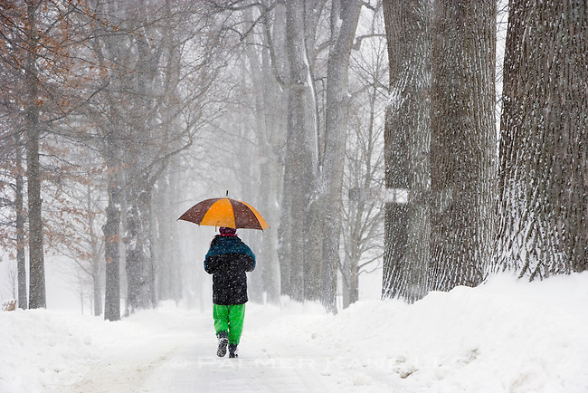 Woman with umbrella trudging down a road through the woods during snowstorm