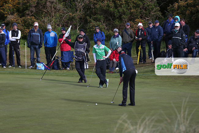 Gavin Moynihan (AM-IRL) on the 11th  green during Round Two of the 2015 Dubai Duty Free Irish Open Hosted by The Rory Foundation at Royal County Down Golf Club, Newcastle County Down, Northern Ireland. 29/05/2015. Picture David Lloyd | www.golffile.ie