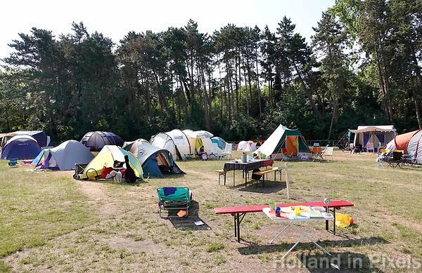 Nederland - Zaandam - 2018.  Buurtcamping in Burgemeester In 't Veldpark. Buurtbewoners kamperen drie dagen in een park vlakbij huis.   Foto Berlinda van Dam / Hollandse Hoogte