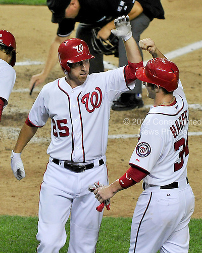 Washington Nationals first baseman Adam LaRoche (25), center, celebrates his sixth inning 2 run home run with teammate Bryce Harper (34) against the New York Mets at Nationals Park in Washington, D.C. on Wednesday, July 18, 2012..Credit: Ron Sachs / CNP.(RESTRICTION: NO New York or New Jersey Newspapers or newspapers within a 75 mile radius of New York City)