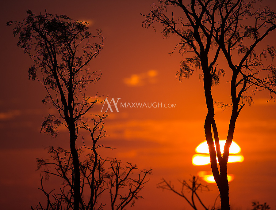 Sunset in Emas National Park.