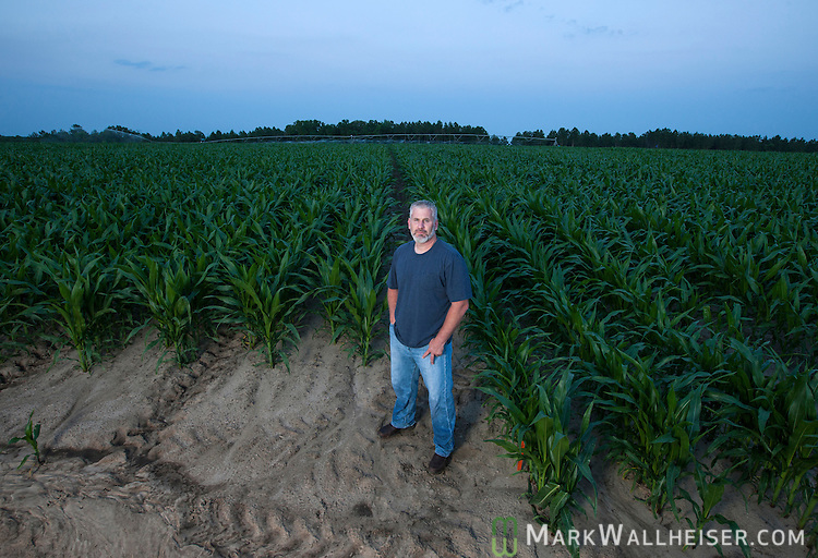 Randy Dowdy with his double row corn (left) and single row corn (right) in his fields just outside the rural town of Pavo, Ga  near Valdosta in southwest Georgia May 9, 2013.
