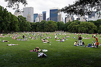 New York, Usa, Giugno 2007. Pic nic a Central Park