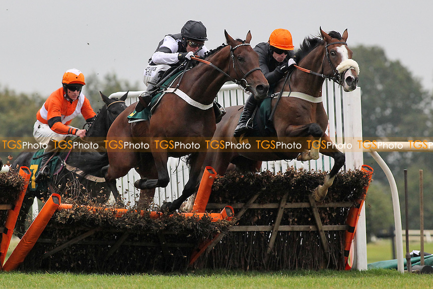 Race winner Makari ridden by Andrew Tinkler jumps alongside House Party ridden by Denis O'Regan (R) in the Huge Prize Money At Fakenham 26th October Novices Hurdle - Horse Racing at Fakenham Racecourse, Norfolk - 19/10/12 - MANDATORY CREDIT: Gavin Ellis/TGSPHOTO - Self billing applies where appropriate - 0845 094 6026 - contact@tgsphoto.co.uk - NO UNPAID USE