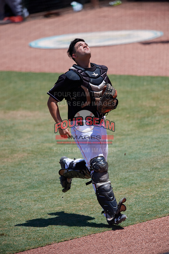 Jupiter Hammerheads catcher Michael Hernandez (27) tracks a pop up during a game against the Palm Beach Cardinals on August 5, 2018 at Roger Dean Chevrolet Stadium in Jupiter, Florida.  Jupiter defeated Palm Beach 3-0.  (Mike Janes/Four Seam Images)