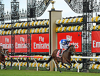 2014 Melbourne Cup