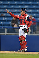 Salem Red Sox catcher Jayson Hernandez (24) during a game against the Lynchburg Hillcats on April 25, 2014 at Lewisgale Field in Salem, Virginia.  Salem defeated Lynchburg 10-0.  (Mike Janes/Four Seam Images)