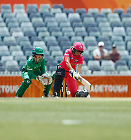 3rd November 2019; Western Australia Cricket Association Ground, Perth, Western Australia, Australia; Womens Big Bash League Cricket, Sydney Sixers verus Melbourne Stars; Alyssa Healy of the Sydney Sixers plays a reverse sweep during her innings - Editorial Use