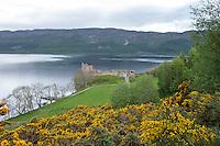 Ruine des Urquhart Castle nahe der Ortschaft Lewinston am Loch Ness in den North West Highlands.<br /> 25.5.2015, Highlands/Schottland<br /> Copyright: Christian-Ditsch.de<br /> [Inhaltsveraendernde Manipulation des Fotos nur nach ausdruecklicher Genehmigung des Fotografen. Vereinbarungen ueber Abtretung von Persoenlichkeitsrechten/Model Release der abgebildeten Person/Personen liegen nicht vor. NO MODEL RELEASE! Nur fuer Redaktionelle Zwecke. Don't publish without copyright Christian-Ditsch.de, Veroeffentlichung nur mit Fotografennennung, sowie gegen Honorar, MwSt. und Beleg. Konto: I N G - D i B a, IBAN DE58500105175400192269, BIC INGDDEFFXXX, Kontakt: post@christian-ditsch.de<br /> Bei der Bearbeitung der Dateiinformationen darf die Urheberkennzeichnung in den EXIF- und  IPTC-Daten nicht entfernt werden, diese sind in digitalen Medien nach &sect;95c UrhG rechtlich geschuetzt. Der Urhebervermerk wird gemaess &sect;13 UrhG verlangt.]