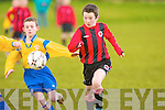 Park's James Duggan and Fairview's Kevin O'Connor..