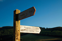 Peebles Signpost, Soonhope Glen near Peebles, Scottish Borders<br /> <br /> Copyright www.scottishhorizons.co.uk/Keith Fergus 2012 All Rights Reserved