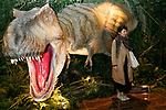A woman poses for a photograph next to a life-size Tyrannosaurus rex model at the entrance lobby of the Henn-na (Weird) Hotel on March 15, 2017, Chiba, Japan. The hotel is managed by robots who can attend guest in English, Chinese and Japanese language. Every room has a concierge robot ''Tapia'' set to talk or make a request from guests such as turn on or off TV or provides weather forecast and news. Henn-na hotel opens its second branch in Chiba Prefecture, near to Tokyo Disney from March 15, which rooms cost start from 17,000 JPN per night. The first robot hotel opened in 2015 in Nagasaki. (Photo by Rodrigo Reyes Marin/AFLO)