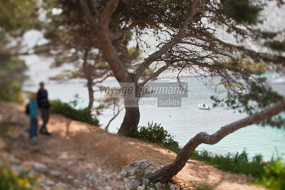 Europe/France/Provence-Alpes-Côte d'Azur/13/Bouches-du-Rhône/Marseille: A la Calanque de Sormiou