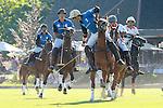 Polo 2014 Handicap Chile