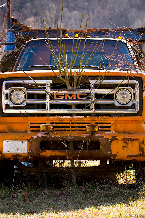 Automotive Images  - Celebrating America's love with the car through iconic details and design elements - old and new, rusty and restored, little known rare models to common models. <br />