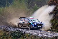 2019 WRC Wales Rally GB Day 3 Oct 5th