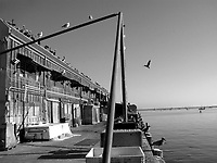 Traveling to the sleepy sea side town of Avila, California there is plenty to do in the old town shops, the beach, and the fishing pier of Avila.