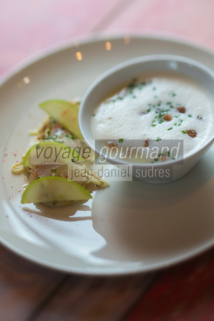Europe/France/Bretagne/56/Morbihan/Carnac: Restaurant: Côté Cuisine - Cappuccino de panais à la ciboulette avec son lieu mariné à la la rémoulade de pomme et céleri
