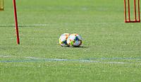 Bälle liegen bereit - 03.06.2019: Trainingslager der Deutschen Nationalmannschaft zur EM-Qualifikation in Venlo/NL