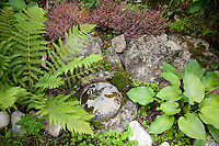 A little stone pond's weathered and mossy surface blends in with the rocks and plants that surround it in the garden