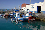 Los Cristianos harbour, fishing boats moored. Los Cristianos, TenerifeTenerife, Canary Islands, Spain
