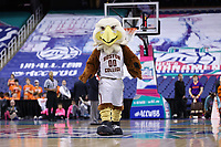 GREENSBORO, NC - MARCH 6: Boston College mascot Baldwin the Eagle during a game between Clemson and Boston College at Greensboro Coliseum on March 6, 2020 in Greensboro, North Carolina.