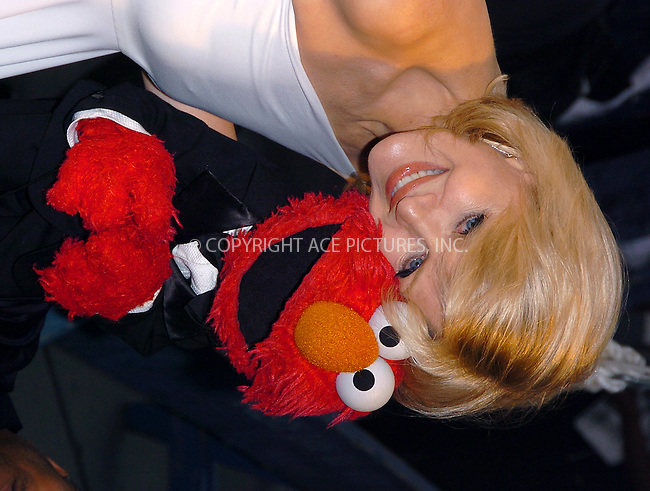 Diane Sawyer at Sesame Workshop's Second Annual Benefit Gala. New York, June 2, 2004. Please byline: AJ SOKALNER/ACE Pictures.   .. *** ***..All Celebrity Entertainment, Inc:  ..contact: Alecsey Boldeskul (646) 267-6913 ..Philip Vaughan (646) 769-0430..e-mail: info@nyphotopress.com