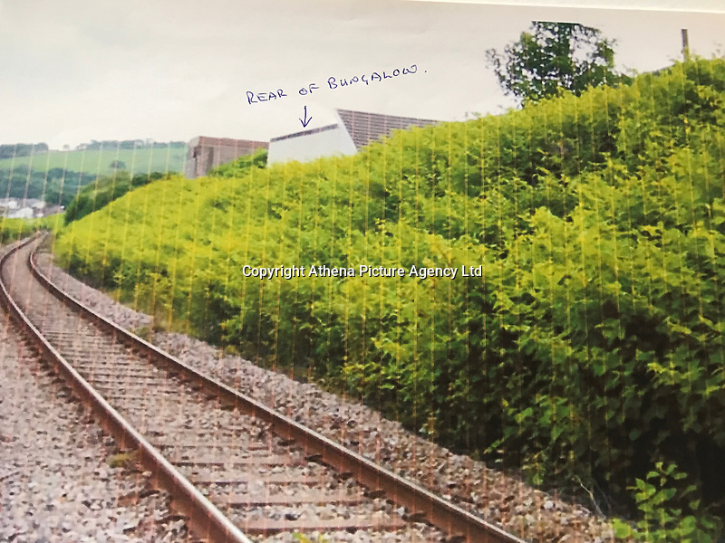 """COPY BY TOM BEDFORD<br /> Pictured: The Japanese knotweed behind one of the properties with the bungalow marked.<br /> Re: A homeowner whose bungalow is towered over by Japanese knotweed on a railway line has won a four-year legal fight for compensation by Network Rail.<br /> Robin Waistell claimed he was unable to sell because the rail body had ignored requests to tackle the invasive weed on the bank behind his home in Maesteg.<br /> The case was seen as a likely test for homeowners whose property is blighted by knotweed on railway embankments.<br /> Network Rail said it would be """"reviewing the judgement in detail"""".<br /> It is understood the rail infrastructure body was refused immediate leave to appeal against the ruling.<br /> Network Rail faces potential legal costs running into six figures after losing the case in Cardiff bought by Mr Waistell and a neighbour.<br /> Widower Mr Waistell, 70, had moved to the bungalow from Spain after his wife died.<br /> He had hoped to return to the sun, but found his property sale stymied by the knotweed growing on adjacent Network Rail land and was asking for £60,000 compensation for loss of value."""