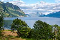 Norway, Øystese. Hardangerfjord.
