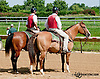 Outriders at Delaware Park on 8/15/13