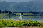 Yacht sailing on Forggensee lake close to Neuschwansein castle. Bavaria, South Germany.