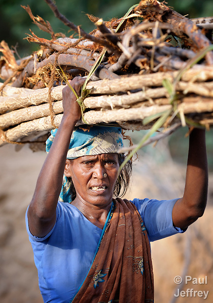 A woman carries firewood along a street in Sathangudi, a village in the southern Indian state of Tamil Nadu.